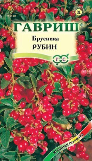 Брусника Рубин 20 шт.