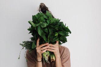 Пряные травы и салаты - посев зелени в зиму