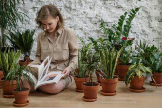 Женщина в окружении комнатных растений и с книгой в руках изучает, как ухаживать за комнатными растениями
