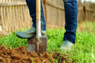 Человек с лопатой на огороде: Чем удобрить землю весной перед посадкой овощей
